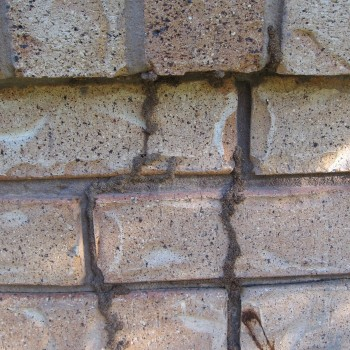 Termite-mud-leads-over-bricks