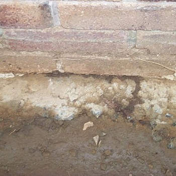 Termites-building-over-footing